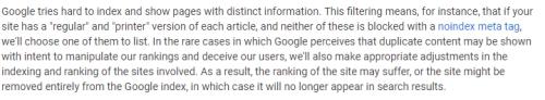 Google duplicate content excerpt