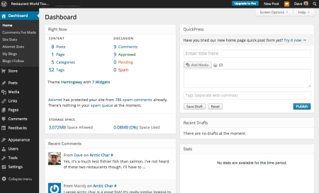 WordPress website design dashboard